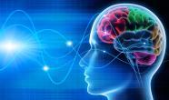 Neuro(r)evolution