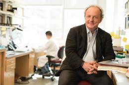 Conversazione con l'oncologo Pier Paolo Pandolfi